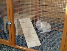 Rabbit Playgrounds/- Houses
