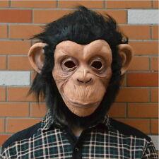 Monkey Mask Funny Adult Animal Costume Head Halloween Fancy Dress L30
