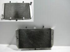 Wasserkühler Kühler Radiator Water Cooler Kawasaki Versys 1000, LZT00A, 12-14