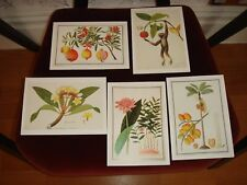 Set of 9 Note Cards & Envelopes National Heritage Board Singapore History Museum