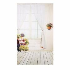Hot Window Potted Plants Wood Floor Photography Backdrops Photo Background Props