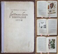 1958 RR Soviet Russian Book PESTS AND DISEASES OF VINE Grape Viticulture Growing