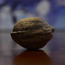Beautiful Moqui Marble (Shaman Stone) from Utah 63 grams