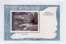 TORRENT WALK, DOLGELLY: Great Western Railway postcard (C23850)