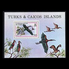Turks & Caicos, Sc #430, MNH, 1980, S/S, Birds, Glossy Ibis, BI017F