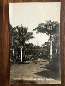 SINGAPORE OLD POSTCARD PALMS BOTANICAL GARDENS SINGAPORE TO ENGLAND !!