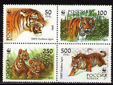 Russia 1993 Sc6181a Mi343-46 1 block mnh Ussuri Tigers