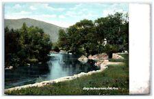 Early 1900s Along the Hoosatonic River, Lee, Ma Postcard