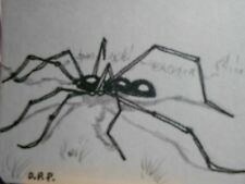 ACEO  black long legged spider  miniature art print from my original Aceo