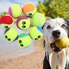 Tennis Ball Sports Tournament Outdoor Fun Cricket Beach Dog_Game.DE
