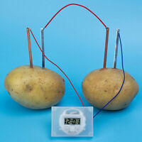 Children bio energy science kit fun potato supply electricity experiments toy FT