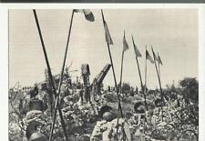 colle di sant elia cartolina d' epoca sacrario prima guerra mondiale 71031