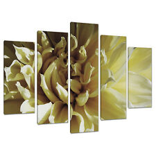 Set of 5 Cream Floral Canvas Prints Pictures Living Room Wall Art 5104