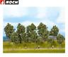 NOCH 24215 Bäume Sommer, 4 - 10 cm hoch (10 Stück) - NEU + OVP