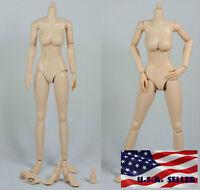 1/6 Scale Female Nude Figure Body N002 Medium Breast Pale Skin Tone ❶USA❶