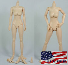 1/6 Scale Female Nude Figure Body N002 Medium Breast Pale Skin Tone ❶USA❶
