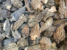 Dried Morel Mushrooms New Crop 2020  8 Oz.FREE SHIPPING