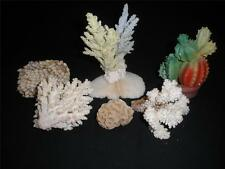 FABULOUS RETRO ASSORTED CORAL AND SHELL ORNAMENTS X 6
