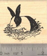 Black and White Dutch Rabbit  Rubber Stamp H13105