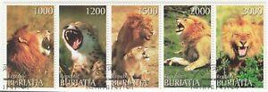 Buriatia; 2000 Lions Strip Of 5, CTO, 5 Vals To 3000