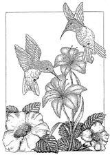 Unmounted Rubber Stamp, Nature Stamps, Bird, Birds, Hummingbird stamps, Flowers