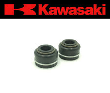 Set of (2) Intake & Exhaust Valve Stem Seals Kawasaki (See Fitment Chart)