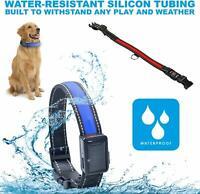 LED Light Up Dog Collar Solar Charging and USB Rechargeable Glow Night Safety