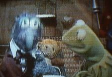 MUPPETS 35mm FOUND SLIDE Transparency KERMIT THE FROG Photo  PUPPETS 01  T 4 Q