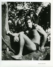 Ron Ely as Tarzan posing with Cheetah in tree original photo