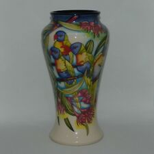 MOORCROFT ENGLAND Australian Exclusive Rainbow Lorikeets Trial Vase Box Signed