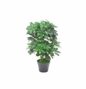 Leaf Artificial Schefflera Arboricola Umbrella Tree, Dark Green 60cm