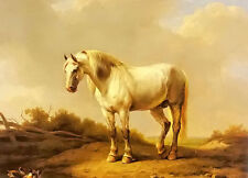 Beautiful Oil painting a white stallion in a landscape horse with duck on canvas