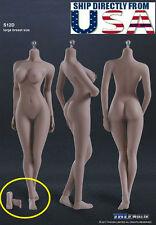 Phicen TBLeague S12D 1/6 Seamless Female Body L Bust SUNTAN Removable Feet USA