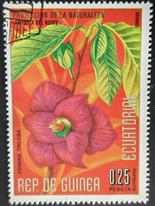 Stamp Equatorial Guinea 1974 0.25P North American Flowers CTO Mint Hinged