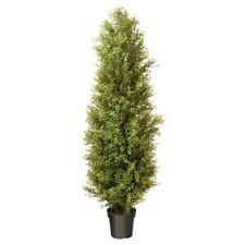 National Tree Company Artificial Plant Decor 72 Inch Argentea Round Green Pot