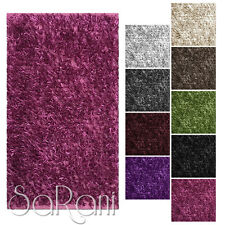 Contemporary Design Shaggy Carpet Various Dimensions and colors Living room