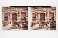 Donna Con Son Cane Foto Placca Stereo 6x13cm Vintage