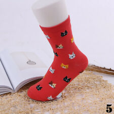 5 Color New Cat Sock Cartoon Animal Cute Pair SOFT WINTER Women 1 Cotto Gift~-