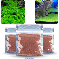 Green Grass Aquarium Plants Fish Tank Decoration Easy Grow Aquatic Plant Seeds