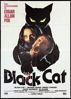BLACK CAT MANIFESTO FILM HORROR LUCIO FULCI EDGAR ALLAN POE 1981 MOVIE POSTER 4F