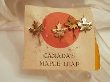 Set Of 4 Vintage 1940s Canada Maple Leaf Pins On Orig. Card  2082d
