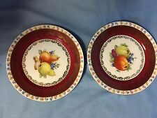 """2 Porcelain Plates Decorated Fruits, Flowers, Gold Bavaria Cico 7 3/4"""" Must See"""