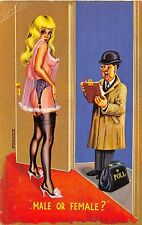 POSTCARD   COMIC   Pretty  Girl  Nylons  Knickers  Pollster