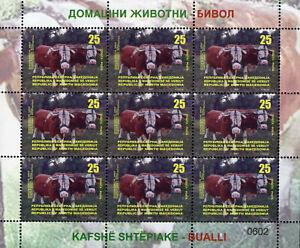 Republic of North Macedonia/M/S/2021/Domestic Animals/Bull
