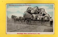 Reeseville,Dodge County,WI Wisconsin,Parsnips on horse drawn wagon exaggeration