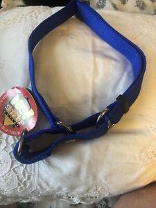 "1"" blue martingale nylon dog collar 24"""