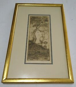 TREE NUMBERED ART ETCHING SKETCH GOLD  FRAMED SIGNED BY ARTIST