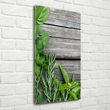 Wandbild Kunst-Druck auf Hart-Glas hochkant 70x140 Kräuter auf Holz