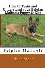 How to Train and Understand Your Belgian Malinois Puppy & Dog by Vince Stead