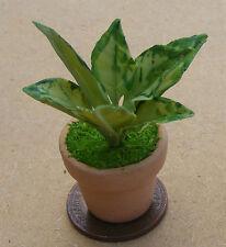 1:12 Light & Dark Green Plant + Pot Dolls House Miniature Garden Accessory E5